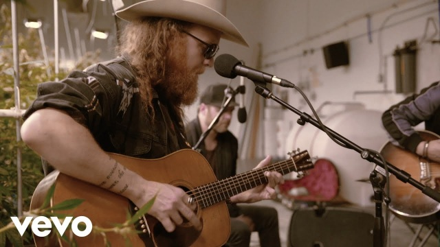 Brothers Osborne – Pushing Up Daisies (Love Alive) (Terrapin Care Station Sessions)